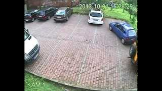 Download Parkowanie roku - październik Video