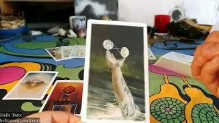 Download Tarot - Byk - czytanie pół- roczne - wiosna i lato 2018 Video