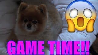 Download DOG POOP PRANK WET HEAD CHALLENGE! Eww, Doodie Juice? (FUNkee Bunch Game Gets Gross) Video