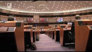 Download English in the European Union - Worlds of English (2/4) Video