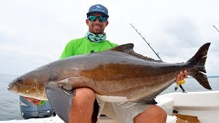Download Caught the BIGGEST Cobia of my Life!! Video