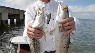 Download Trolling for Trout in Lake Pontchartrain Video