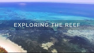 Download Exploring The Great Barrier Reef Video