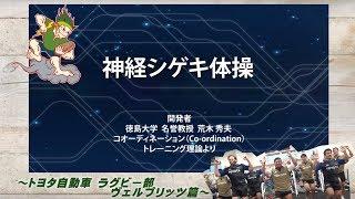 Download 神経シゲキ体操 ラグビー部 ヴェルブリッツ篇 Video