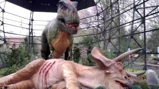 Download Dinosaurs at the Memphis Zoo Video