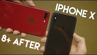 Download Switching to 8 Plus After 5 Months of iPhone X Video