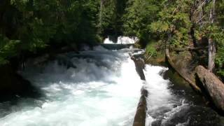 Download Relaxing 3 Hour Video of a Mountain Stream Video