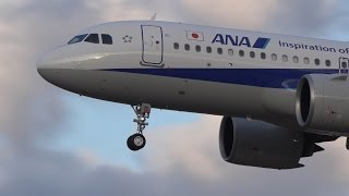 Download ANA Airbus A320neo JA211A Landing at NRT 34L Video