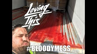 Download The Bloody Mess Load Video