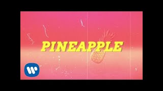 Download Ty Dolla $ign - Pineapple feat. Gucci Mane & Quavo Video