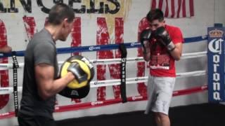 Download Leo Santa Cruz SPEED & POWER CRACKING MITT WORKOUT! vs Carl Frampton Video