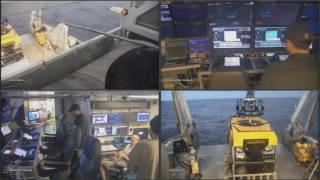 Download Dive #43 - New vent site at 17N (unnamed) - FK161129 - SuBastian Video