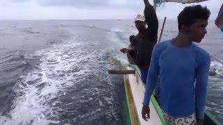 Download Tuna Fishing, Dodanduwa Video