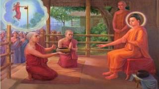 Download เรียนอภิญญา หลวงพ่อฤาษีลิงดำ ภาวนา ″สัมปจิตฉามิ″ ของเก่าฝึกมาหมด 2560 Video