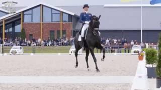 Download Hans-Peter Minderhoud - Dream Boy (v. Vivaldi) stallion Video