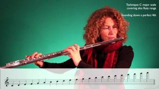 Download Orchestration 102: The Wind Section - 4. The Flute Family Video