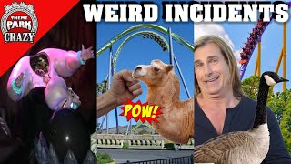 Download 10 WEIRD Amusement Park Incidents (Theme Parks Included) Video