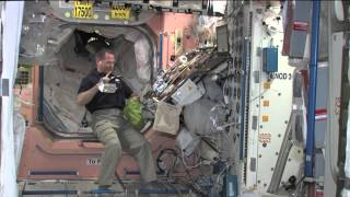 Download New Space Station Commander Previews Thanksgiving in Orbit Video