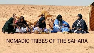 Download Nomadic Tribes of the Sahara | Full Documentary Video