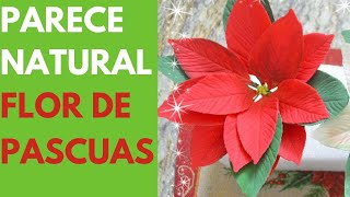 Download Flor de Pascua en Fondant Video