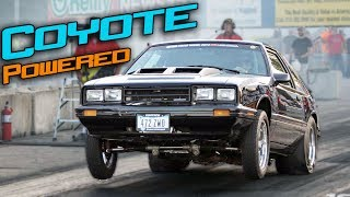 Download This Little Car is BAD! (Supercharged Coyote Swap) Video