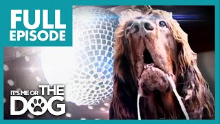 Download The Dog With OCD: Max   Full Episode   It's Me or The Dog Video