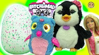 Download Feeding Playdoh Food & Taking Care of Hatchimals Owlicorn + Baby Egg with Fur Real Friends Video