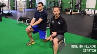 Download True Hip Flexor Stretch - Hip Mobility Drill Video