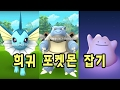 Download 포켓몬고 낙성대 거북왕 샤미드 독파리 니드킹 야도란 메타몽 미뇽 잡았다! | 훈토이TV Video