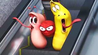 Download LARVA | EL METRO | Película de dibujos animados | Dibujos animados para niños | WildBrain Video