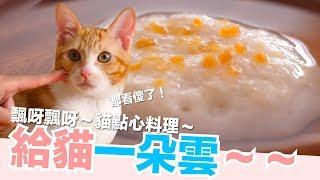 Download 是一朵雲!腎貓也可以吃的補水貓點心。20萬QA活動資訊喔!【好味貓廚房】EP123 Video