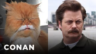 Download Cats Who Look Like Ron Swanson Video