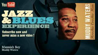 Download Muddy Waters - Mannish Boy Video