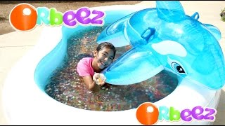 Download Orbeez Pool and Dolphin Summer Water Fun Play!! B2cutecupcakes Video