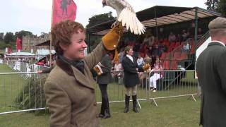 Download Falconry: Our Intangible Cultural Heritage Video