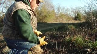 Download Trapping TV Episode 1, Catching Coyotes with Flat Sets and Dirt Hole Sets Video