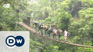 Download Global Ideas: Naturschutz oder Landnutzung? | Global 3000 Video