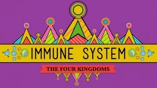 Download Your Immune System: Natural Born Killer - Crash Course Biology #32 Video
