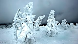 Download 13 Coldest Places on Earth Video