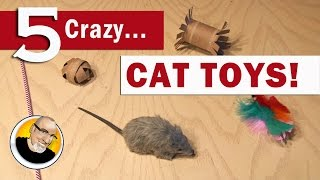 Download 5 Crazy Cat Toys You Can Make! Video