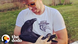 Download Raven Shakes His Tail Feathers Every Time He Sees Dad | The Dodo Video