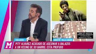 Download Martín Ciccioli habló de Pity Álvarez y su problema con las drogas Video