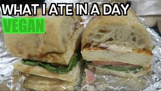 Download What I Ate In A Day Vegan Video