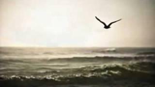 Download Ei eksy taivaan lintukaan -Kari Tapio Video