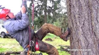 Download Climbing Trees With A Rope Video
