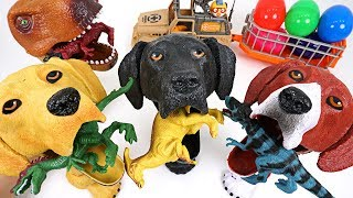 Download Dinosaurs are trying to take surprise egg! Crazy hungry dog and dinosaur summon! - DuDuPopTOY Video