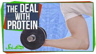 Download The Deal with Protein Video