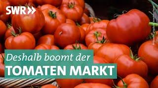Download Das Geschäft mit Tomaten Video