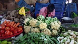 Download Fresh Vegetables | Big Vegetables Market Duary Para Dhaka Bangladesh Video