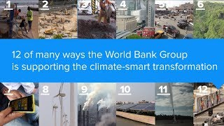 Download 12 Ways the World Bank Group is Supporting a Climate-Smart Transformation Video